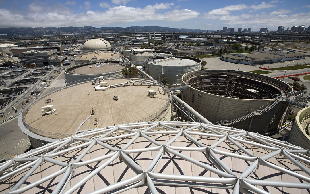 Does Your Digester Have a Dome or Roof?